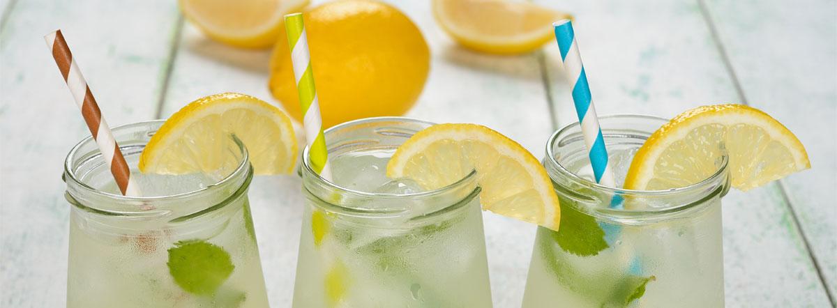 lemon-slide
